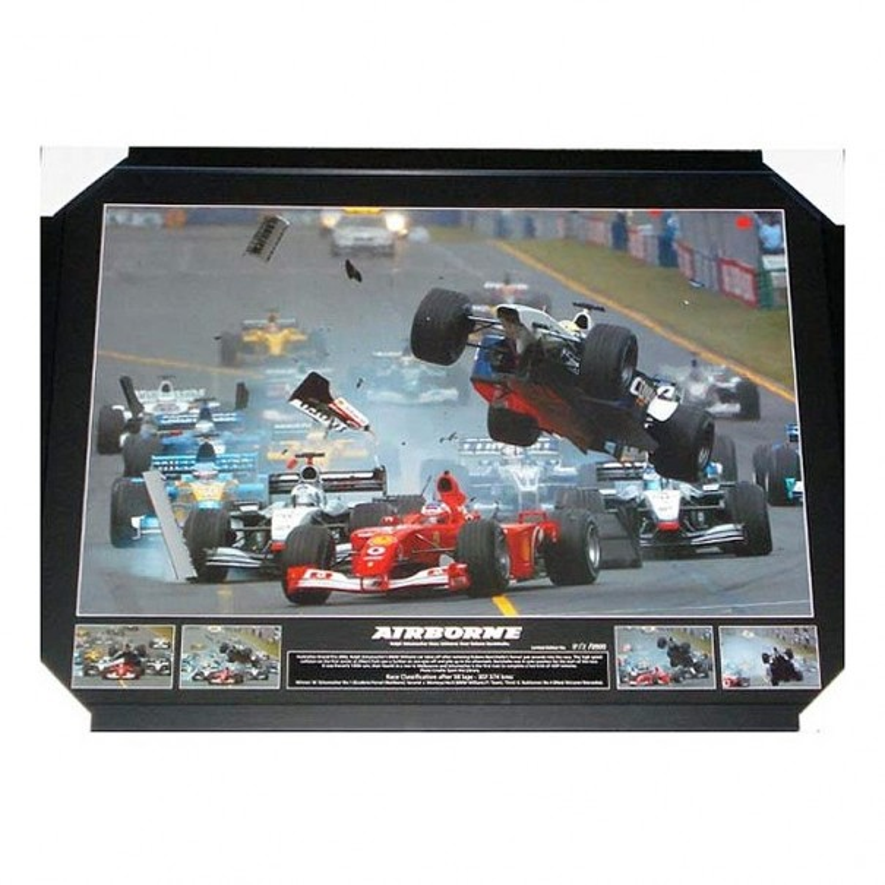 Schumacher Airborne Print Framed