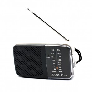 AM/FM Pocket Radio